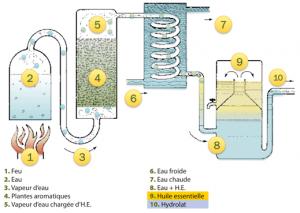 Procede-de-distillation-huile-essentielle-hydrolat