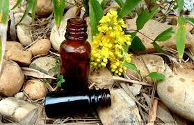 Tout sur les huiles essentielles bio